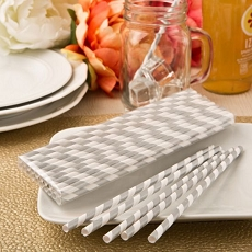 Perfectly Plain Matte  Silver/White Stripe Paper Straws
