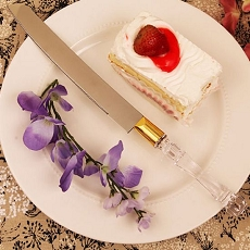 Crystal-Like Acrylic Handled Cake Knife W/Gold Band