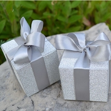 Shimmering Silver Favour Boxes (Set of 24)