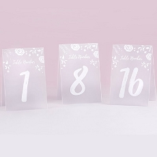 White Frosted Floral Tented Table Numbers (1-18)-Kate Aspen