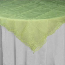 Mint Ruffled Organza Table Cover (15 colors)
