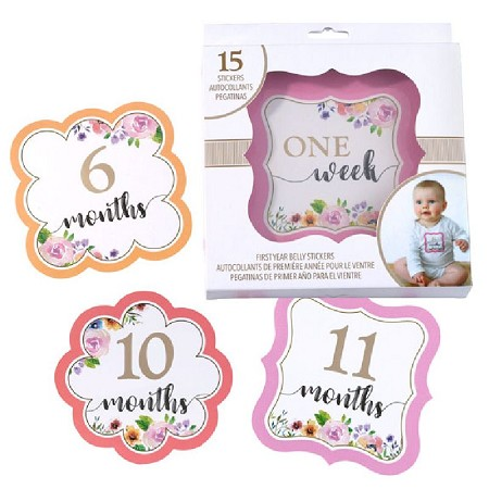 Lillian Rose Pink Watercolor Baby Belly Stickers (Set 1-15)