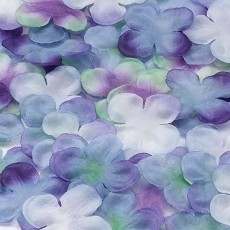 Flower Petals - Purple