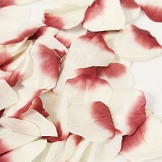 Rose Petals (60 Count) (8 colors)