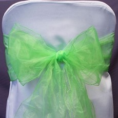 Splash Of Color Organza Chair Bow/Sash (13 colors)